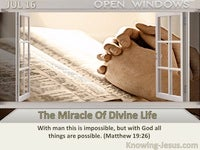 The Miracle Of Divine Life